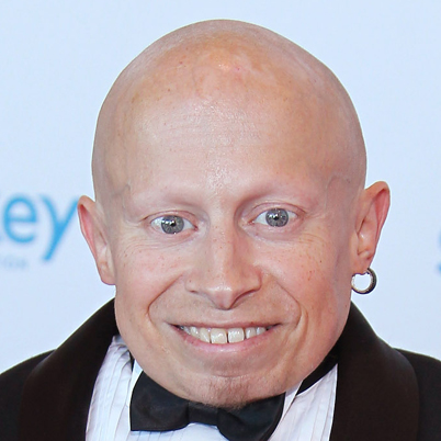 verne troyer twitter